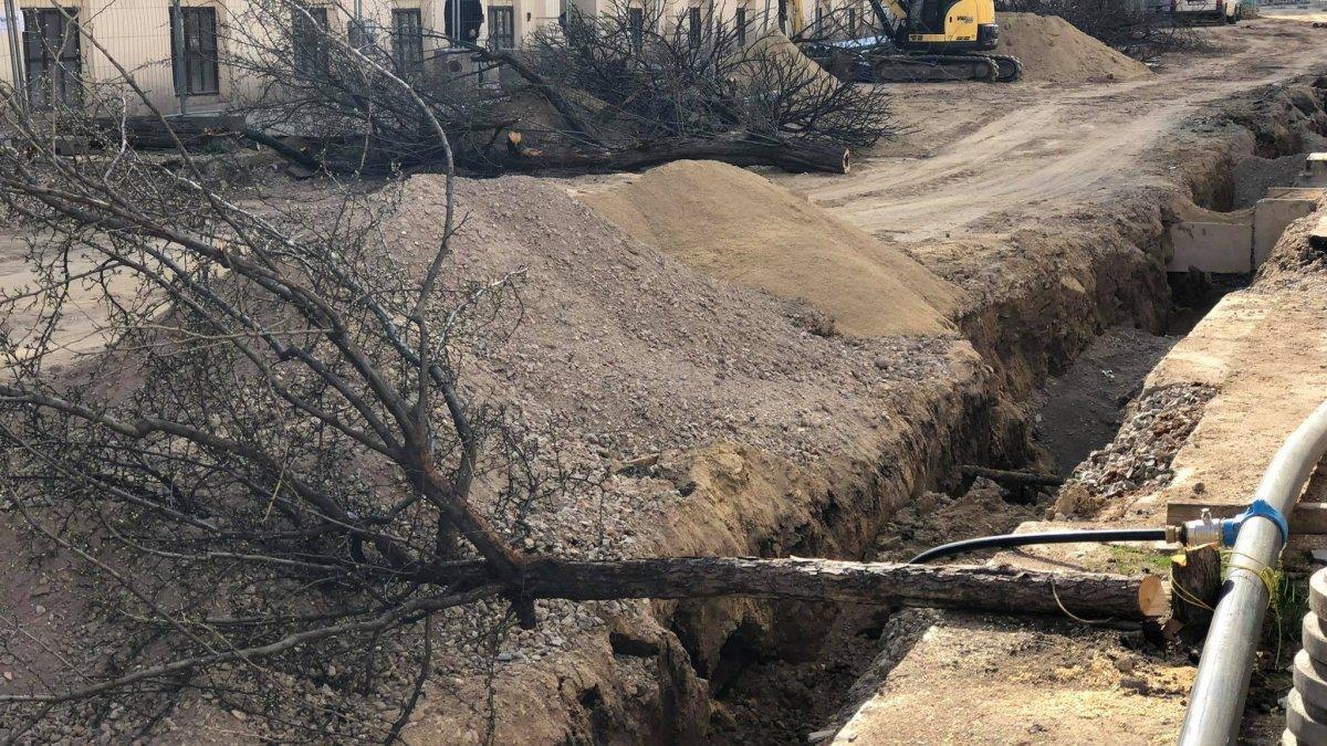 Konec rozkopaným ulicím a kácení stromů kvůli kabelům!