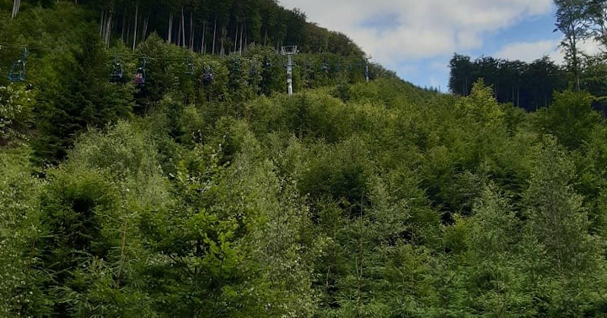 Podpora turismu na místech, která praskají ve švech, je nošení dříví do lesa