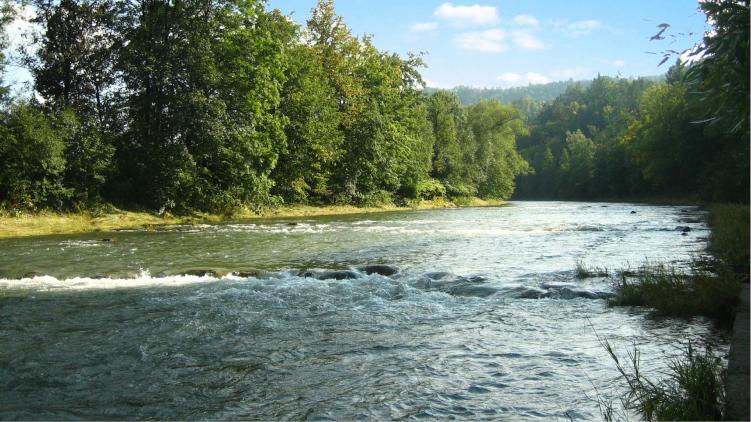 Olomoucký kraj podpoří finančním darem odklízení otrávené řeky Bečvy