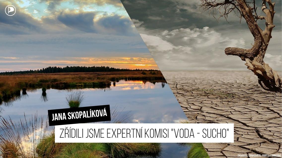 Jana Skopalíková: Zřídili jsme expertní komisi