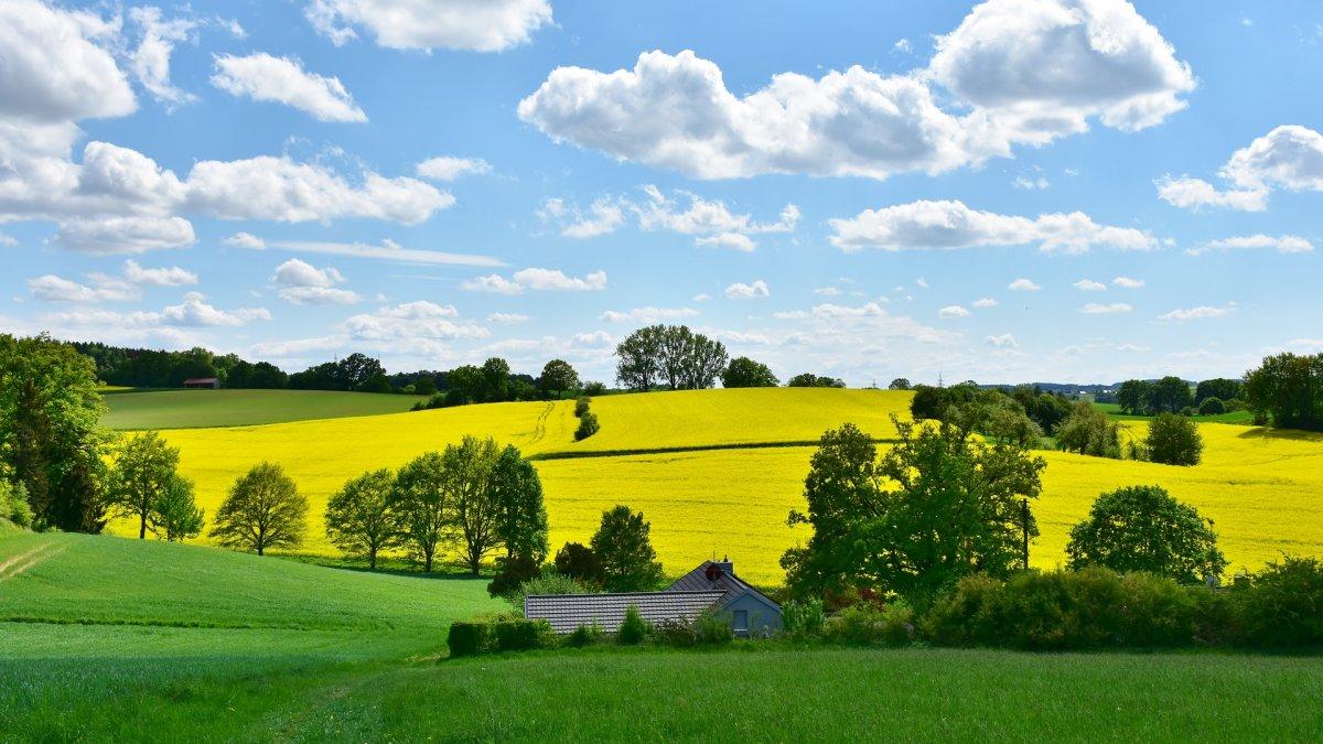 Přes 3 miliony evropských zemědělců odejde do deseti let do důchodu. Nahradí je někdo?
