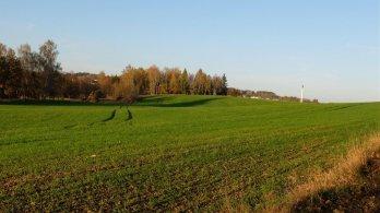 Komentář ke zvolení Františka Talíře náměstkem pro životní prostředí a zemědělství