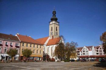Zrušení komisí jako odveta soběslavské rady města členům petičního výboru