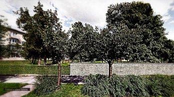 Prostějovští Piráti podporují přiměřenou úpravu prostoru bývalého židovského hřbitova a vyzývají k pokračování jednání