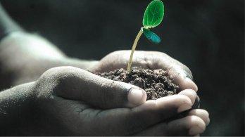Kraje požadují lepší ochranu půdy před erozí