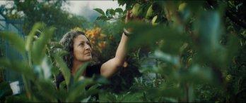 Dominika Poživilová Michailidu: Chci narovnat vztah mezi veřejností, zemědělci a ochranáři přírody!